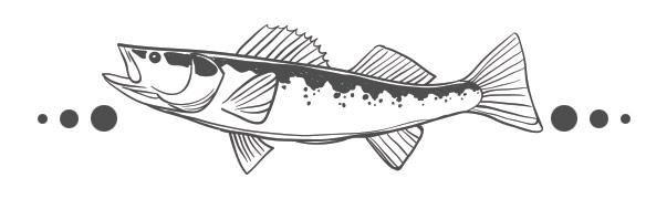 fish_walleye