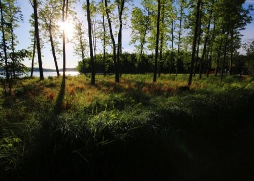 photos-nature-1